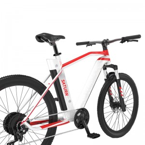 36V 250W REAR MOTOR 29INCH HIGH QUALITY MTB E BIKE