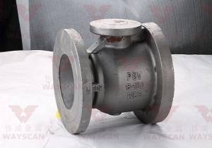 WAYS -V002 WCB  Valve Fittings