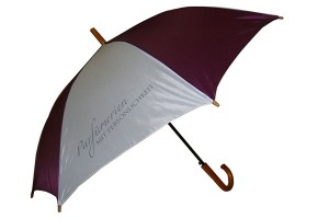 Premium Gift walking Umbrella