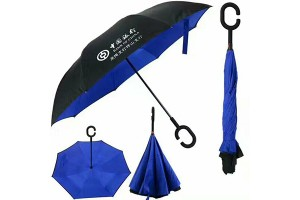 Car reverse umbrella