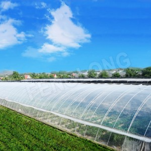 Greenhouse Diffused Plastic Film, Polyethylene Covering, UV Resistant, Diffued light