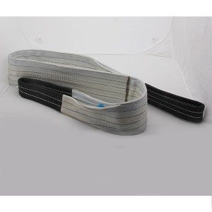Factory made hot-sale Webbing Sling WS8010 for Kuala Lumpur Importers