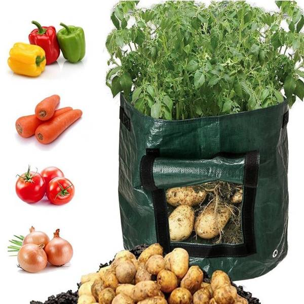 Reusable and Durable PE potato grow bag 10 Gallon Featured Image
