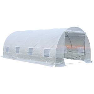 Plastic Tunnel Green House For Agriculture 6x3x2m