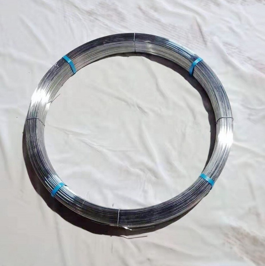 2019 Trade Assurance 2.4*3.0mm Brazil market oval steel wire