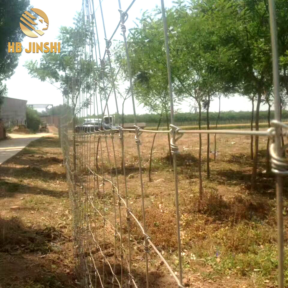 2.1m  galvanized fixed  knot deer fence for sales