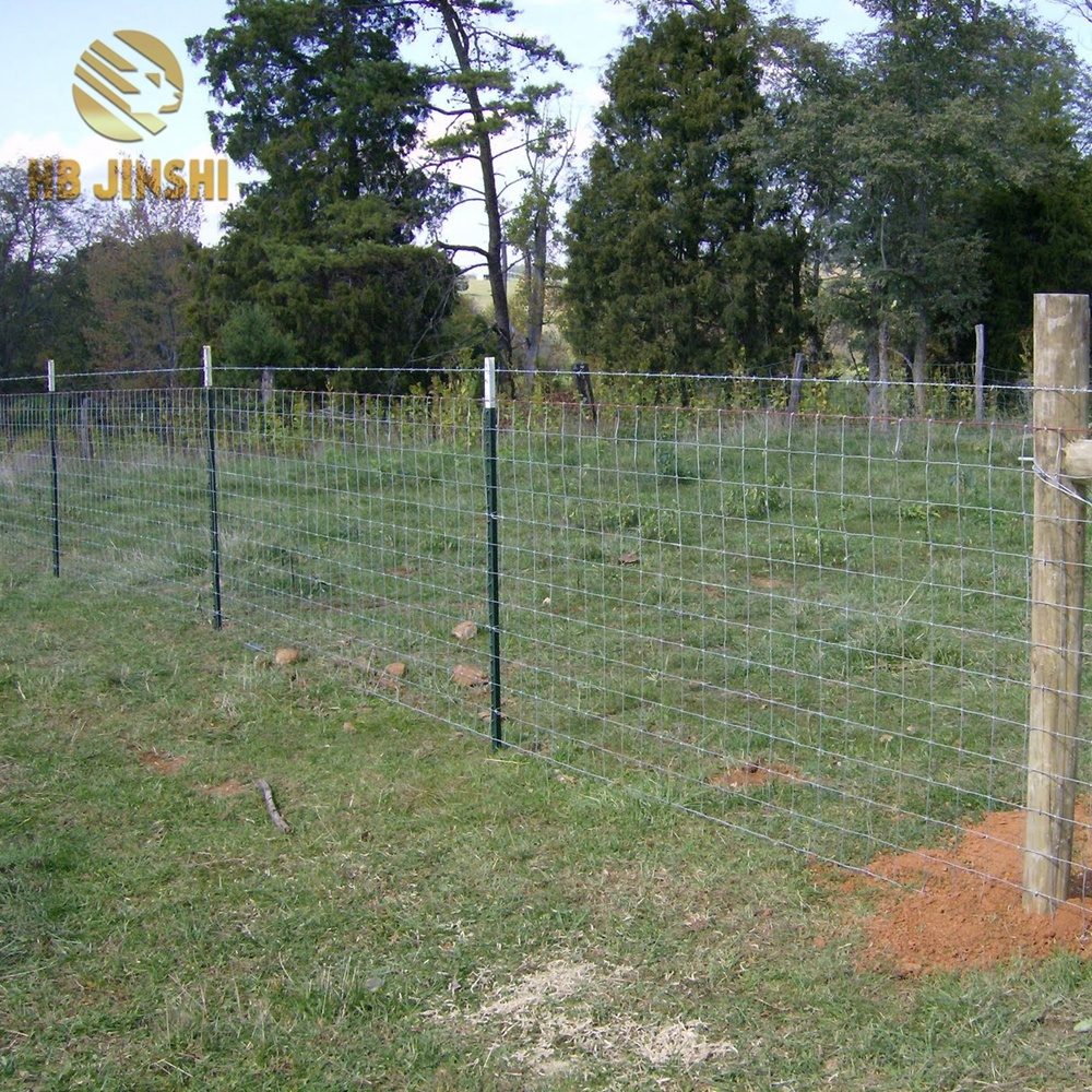 High Tensile Steel Wire Farm Field Fence Hinge Joint Cattle Fencing Wire Mesh in Rolls