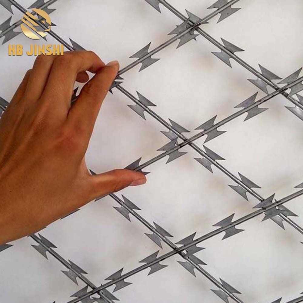 150mm*300mm Welded Razor Wire Diamond Mesh