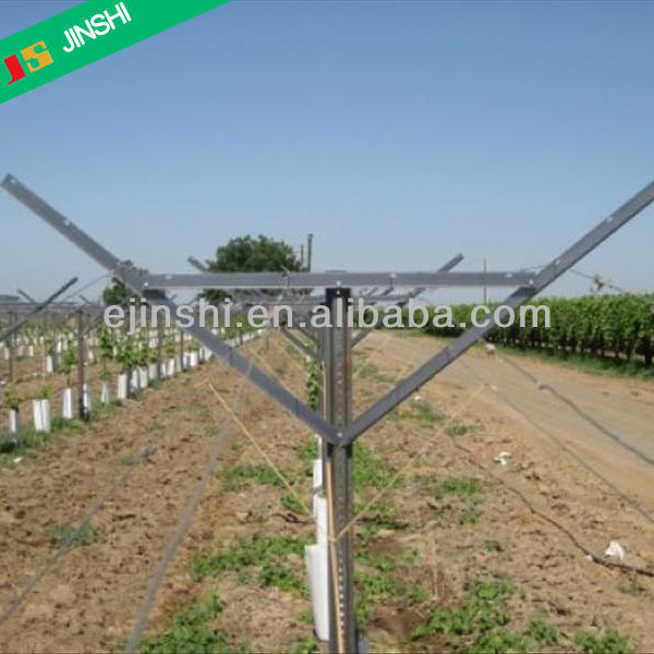 Orchard Plantations Vine Plants Vineyard Grape Stake Hot Dipped Galvanized Metal Vineyard Trellis Post