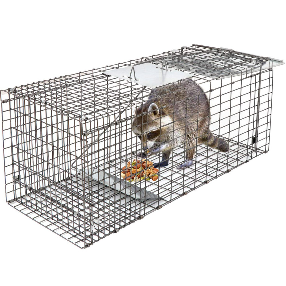 Collapsible Live Animal Trap Catch Humane Rodent Cage Wire Cage Trap