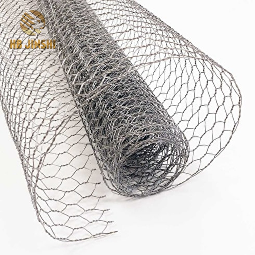 Galvanized Wire Netting with 25mm Mesh