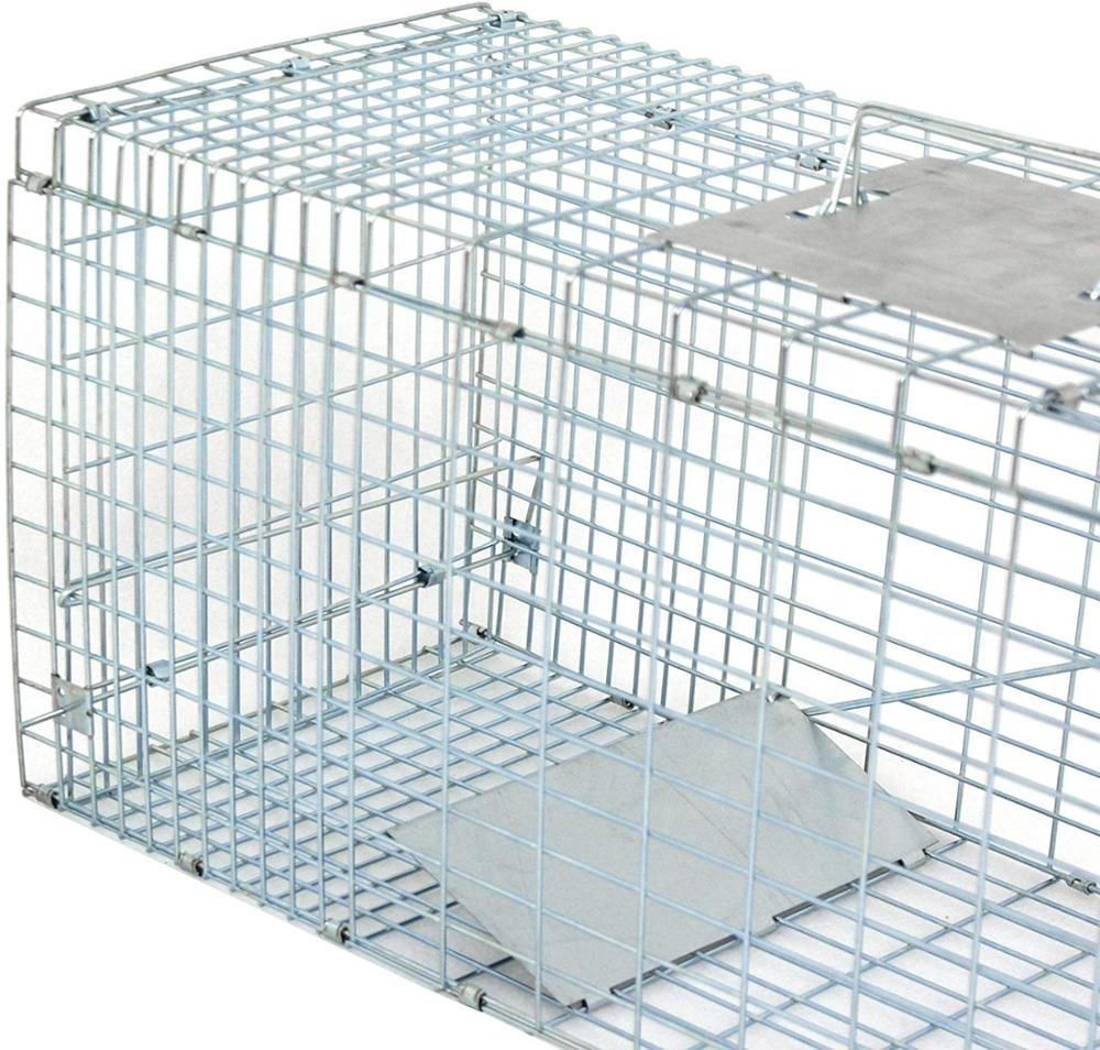 80X28X33cm galvanized Collapsible Humane Animal Trap cage