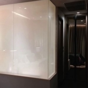 factory low price 900mm Shower Door 8mm Glass -