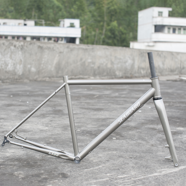 2019 China New Design 20 Inch Steel Bicycle Frame -