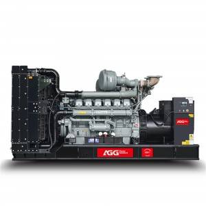 OEM/ODM China Magnetic Power Generator -