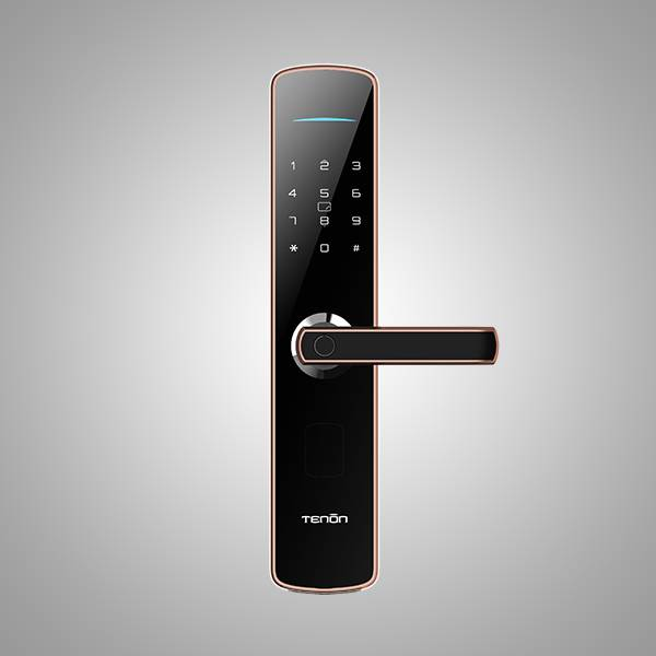 E series – E3C Smart Door Lock Featured Image