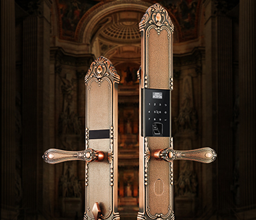 Présentation de Tenon Exquisite et Classical Pattern-F3 Smart Lock