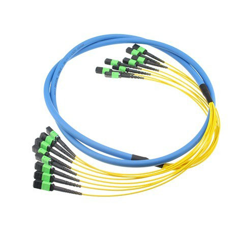 factory low price High Performance Mpo Fiber Optic Connectors - MTP-MTP-om4-cable – INTCERA