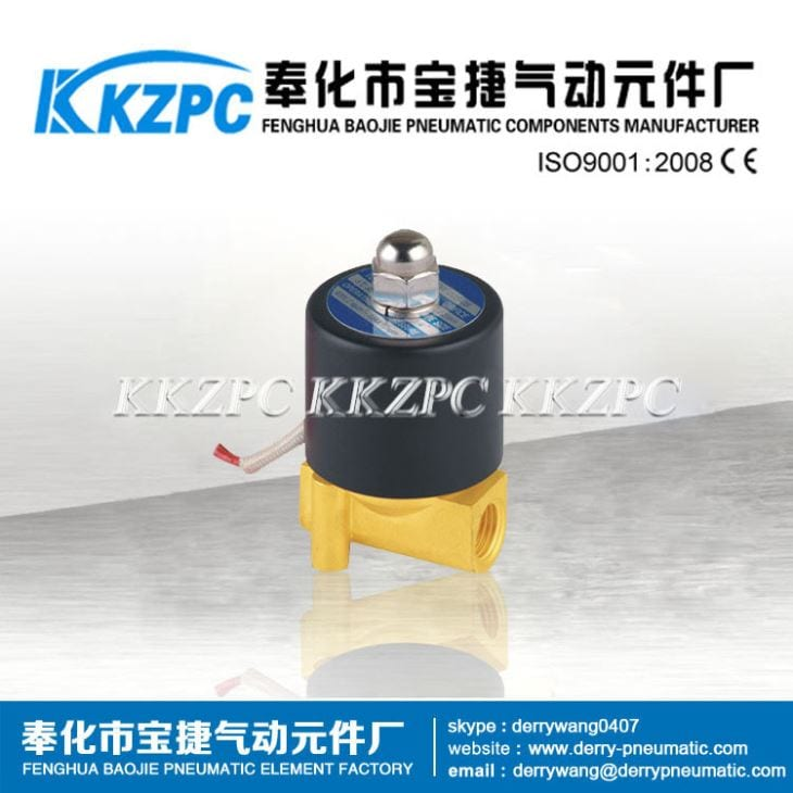 Brass Material Direct Acting Mini Solenoid Water Valve 2W025-06