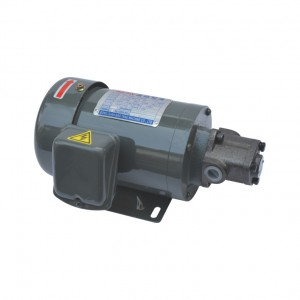MT-Z(Direct plug) Iron shell direct link motor