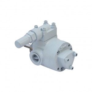 ROP  Heavy oil lubrication pump