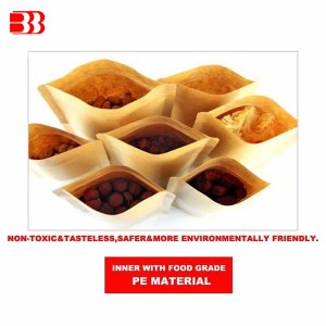 Wholesale Discount Polyester Dust Collector Filter Bag - Kraft PaperKraft Paper+PE lamination – Ben Ben