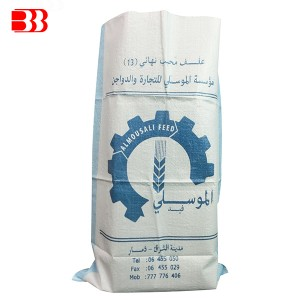Super Purchasing for Pp Woven Packing Bag 50kg - PP Printed Bag – Ben Ben