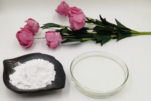 hyaluronic acid powder (Sodium Hyaluronate)