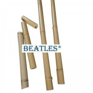 Buy China artificial bamboo canes for screening