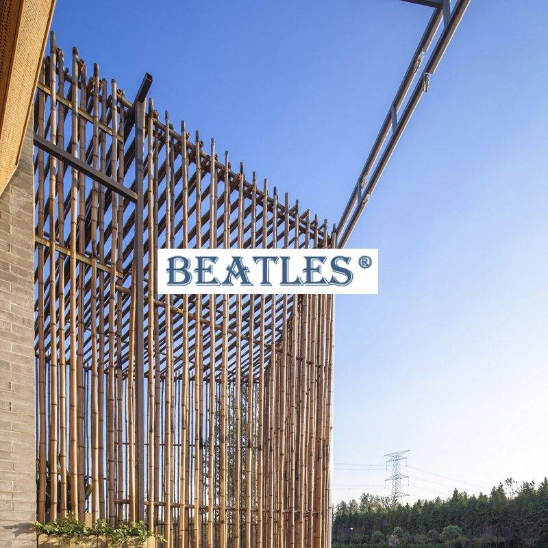 Stainless steel bamboo canes for shopping mall facade