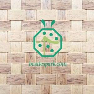 Artificial bamboo matting as palapa false ceiling