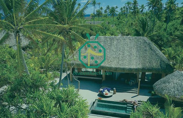 Thatched Roof Resort Of The Brando In French Polynesia