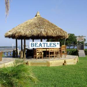 Bottom price for Artificial Thatch For Round Tiki Hut Gazebo for Swansea Manufacturers