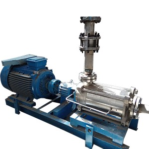 BPE serie medium pressure Tempus hortari Pumps