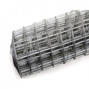 China Top Supplier Welded Wire Mesh In Panel/Roll (Cheap Price)