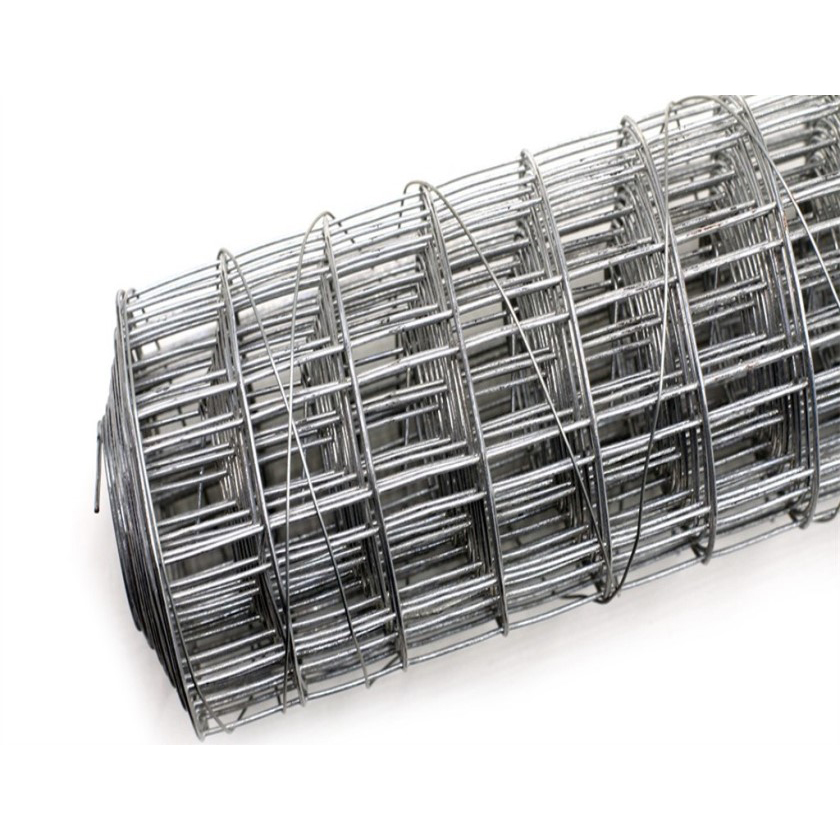 IOS Certificate Barbed Fence Fence Galvanized Wire - China Top Supplier Welded Wire Mesh In Panel/Roll (Cheap Price) – Bluekin