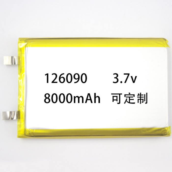 OEM/ODM China Lithium Iron Phosphate Battery -