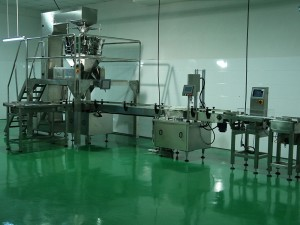 Granule weighing and filling machine