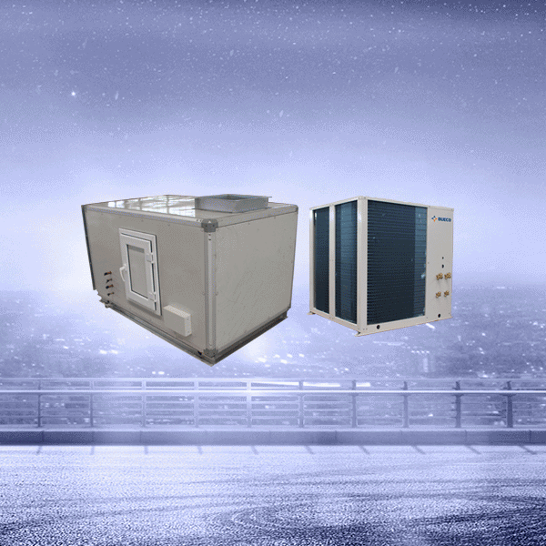Rapid Delivery for Lab Water Chiller - Common DX Air Handling Unit – Bueco