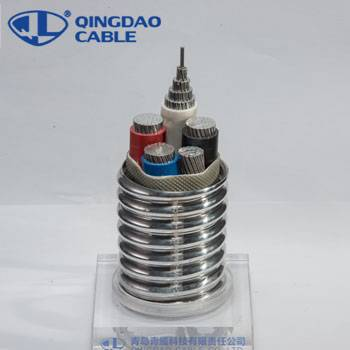 Reasonable price for For Oil Well Submersible Pump - MC cable electrical wire stranded types of armored cable Aluminum/Al conductors XLP/XLPE insulation/insulated Al armored – Cable