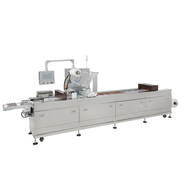 Professional China Meat Canning Plant Sewage Treatment - Automatic thermoforming vacuum packing machine – Leadworld Machinery