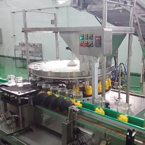 Diced Food Filling Machine