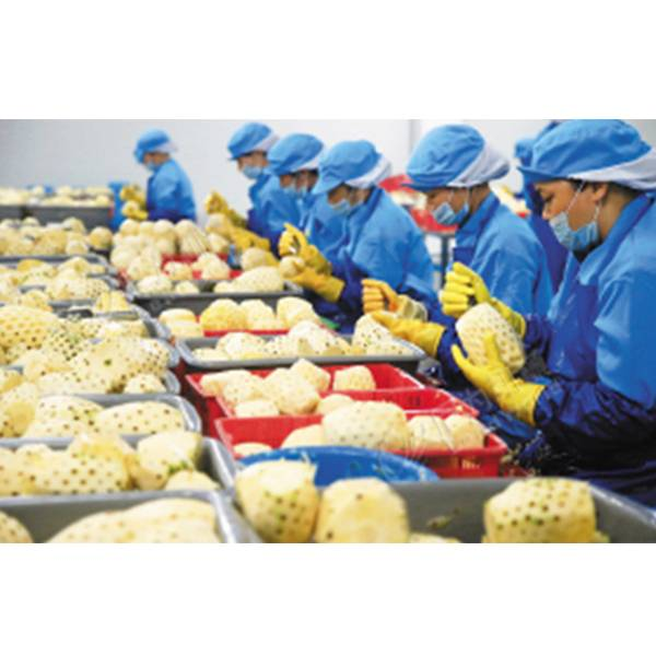 OEM China Power Particle Filling Machine - canned pineapple production line – Leadworld Machinery