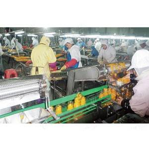 Canned oranges production line