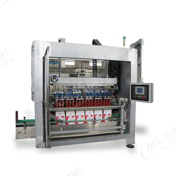 Factory making Canning Filling Machine - Carton packer machine – Leadworld Machinery