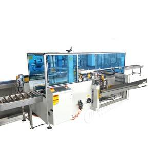 High definition Drink Filling Machine - Carton packing machine – Leadworld Machinery