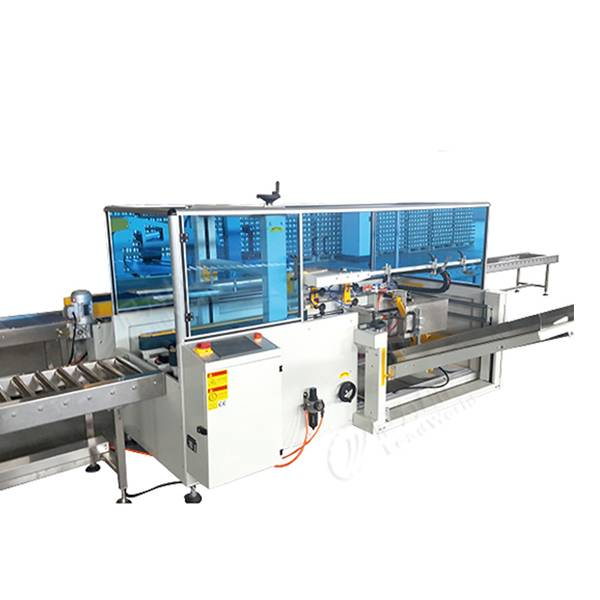 Wholesale Small Scale Plastic Recycling Plant - Carton packing machine – Leadworld Machinery