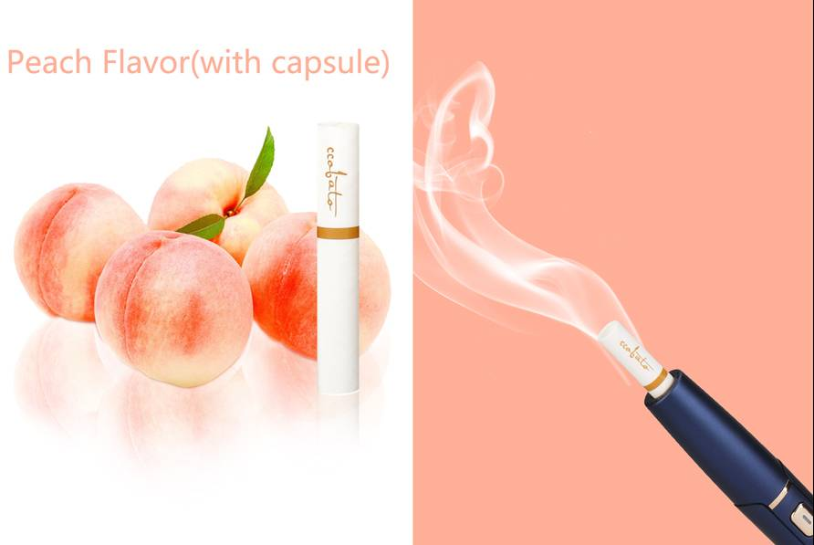 China Supplier Quick Heat Not Burn -