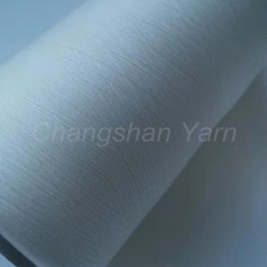 Ordinary Discount T/C80/20 45*45 96*72 POCKETING FABRIC - 60s Compact Yarn – Changshanfabric