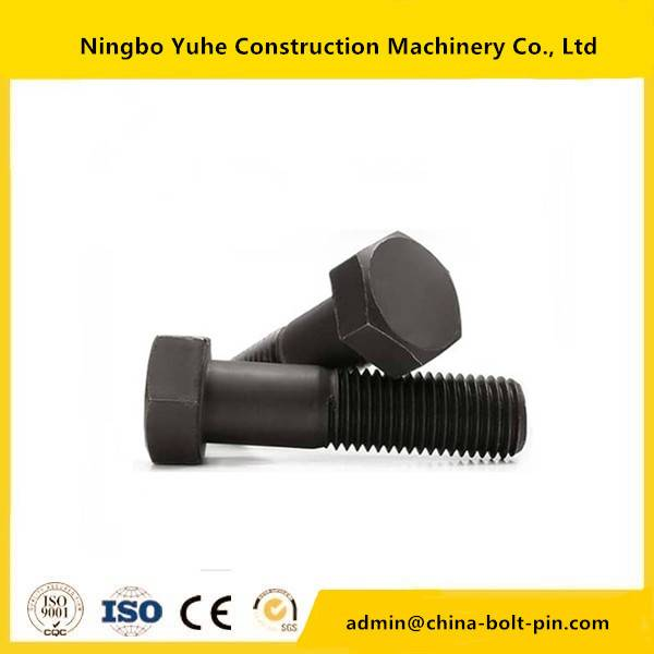 Manufactur standard 12.9grade Bolt -
